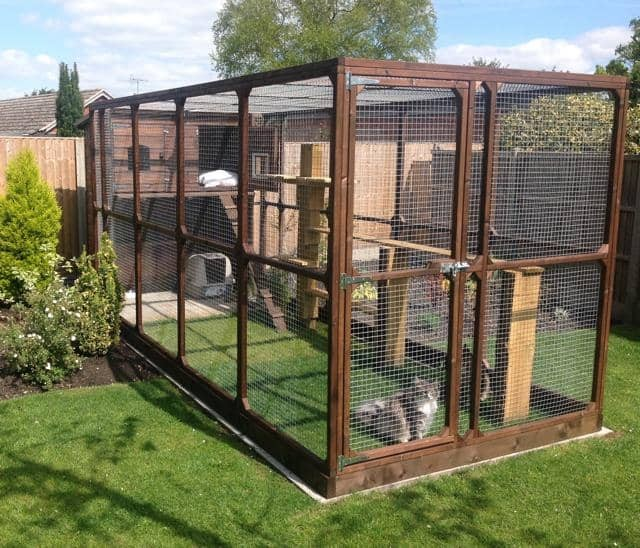 Large Cat Run With Cat House For Outdoor Use Cat Runs